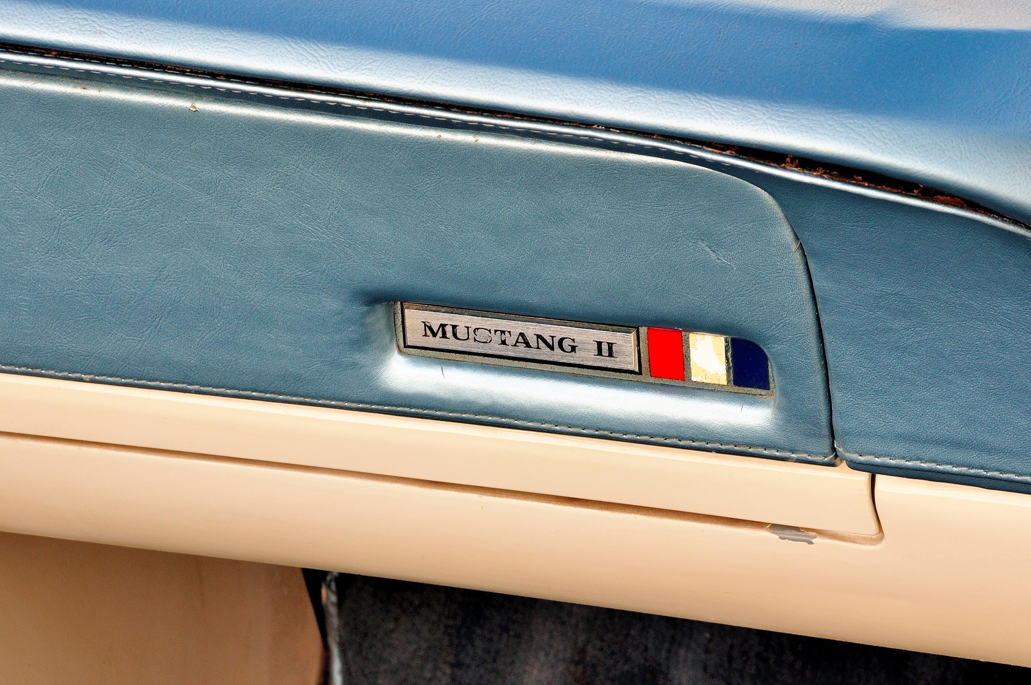 12 1963 Ford Mustang Door
