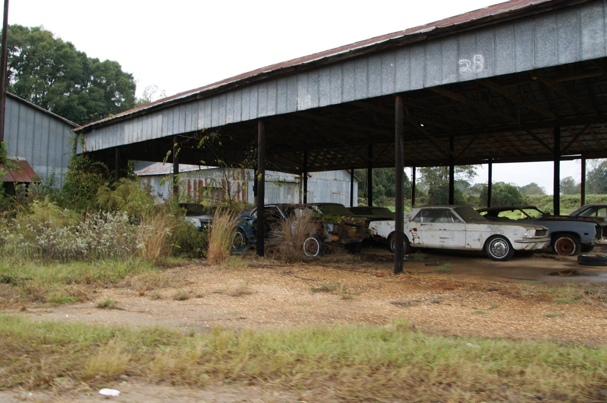 Rare Field Finds Fords Mustangs Trucks Parts 31