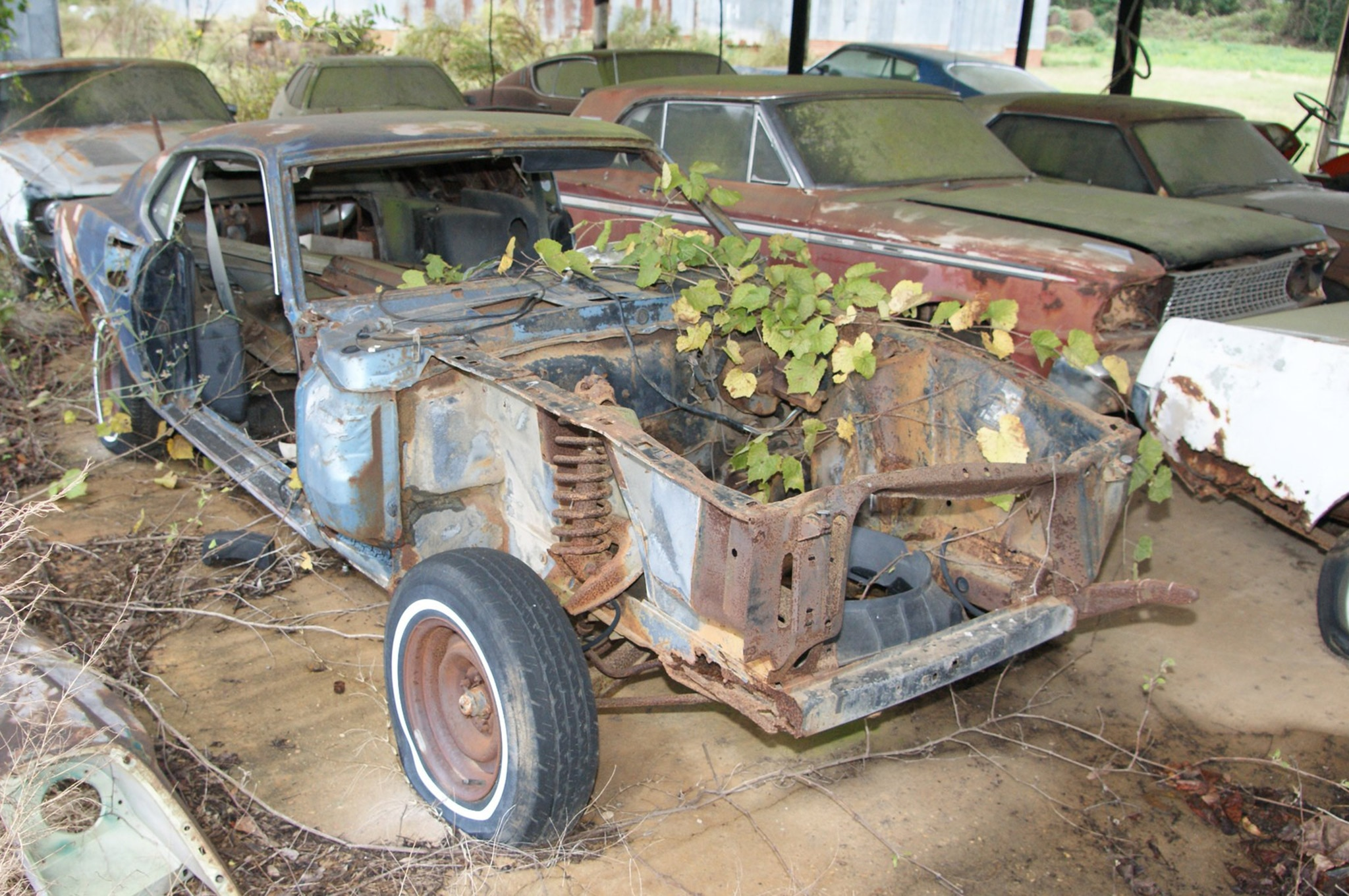 Rare Field Finds Fords Mustangs Trucks Parts 23