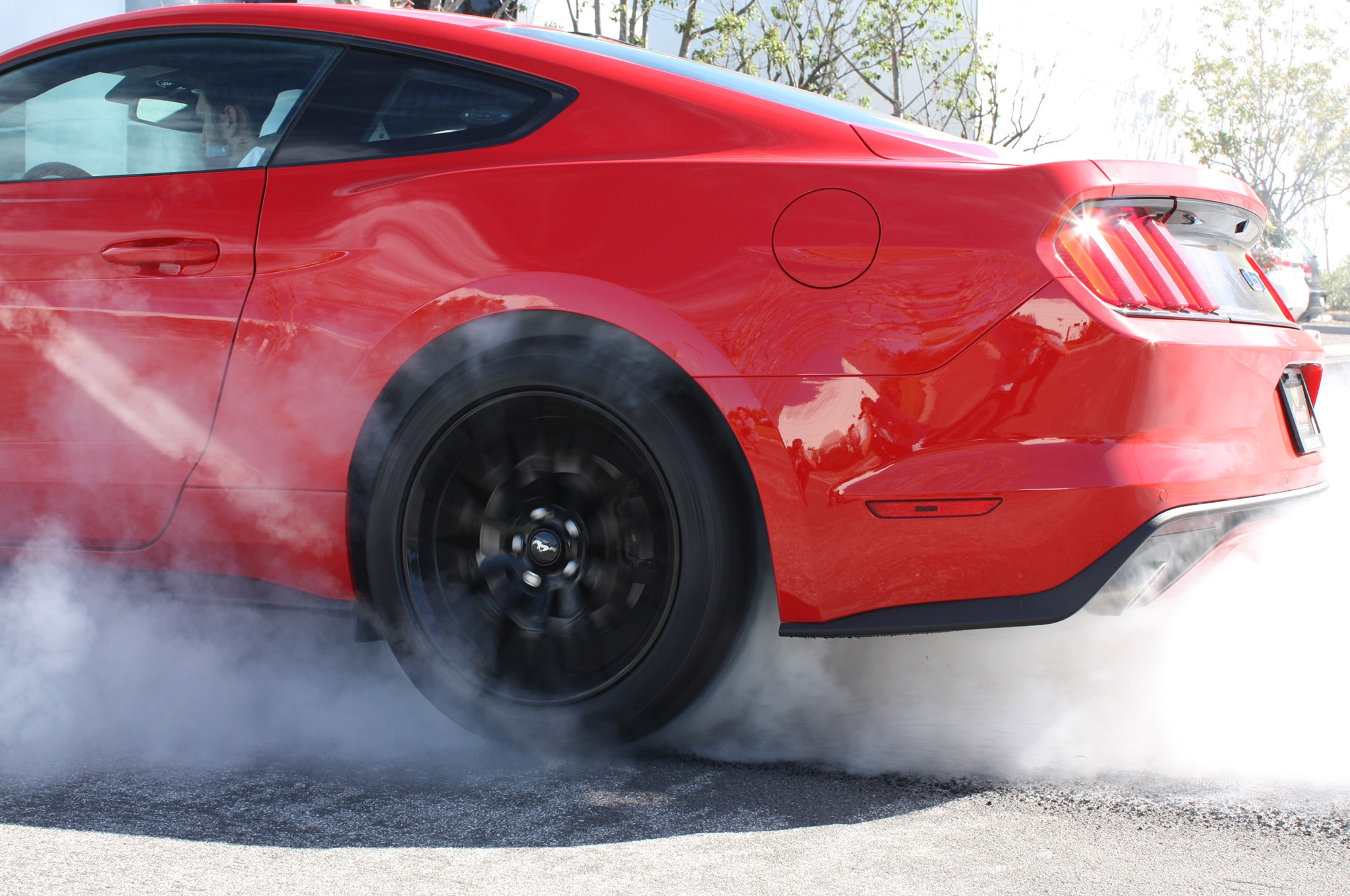 2015 Ford Mustang S550 Red Burnout