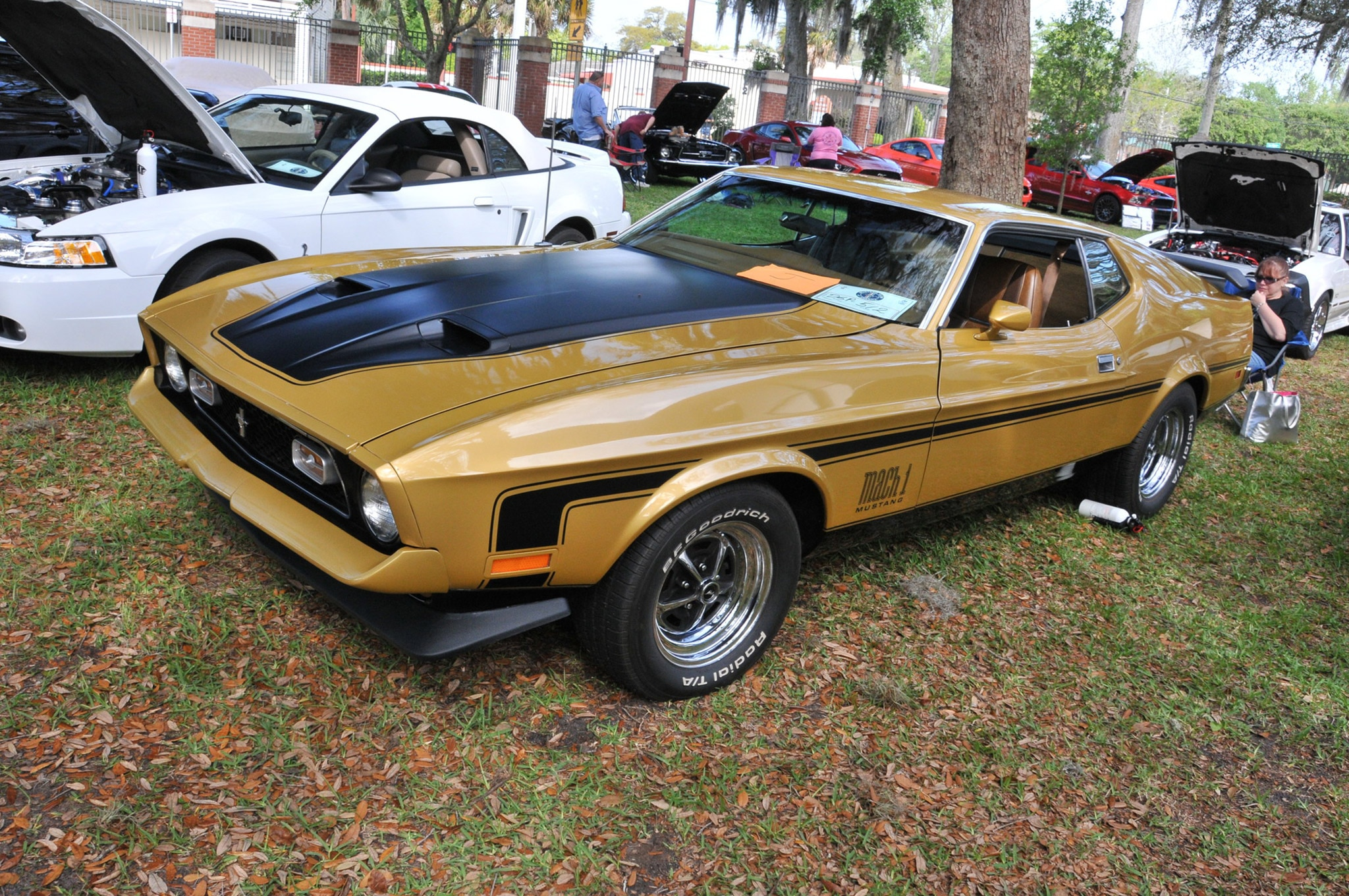 2016 Ancient City Mustang Show St Augustine 040