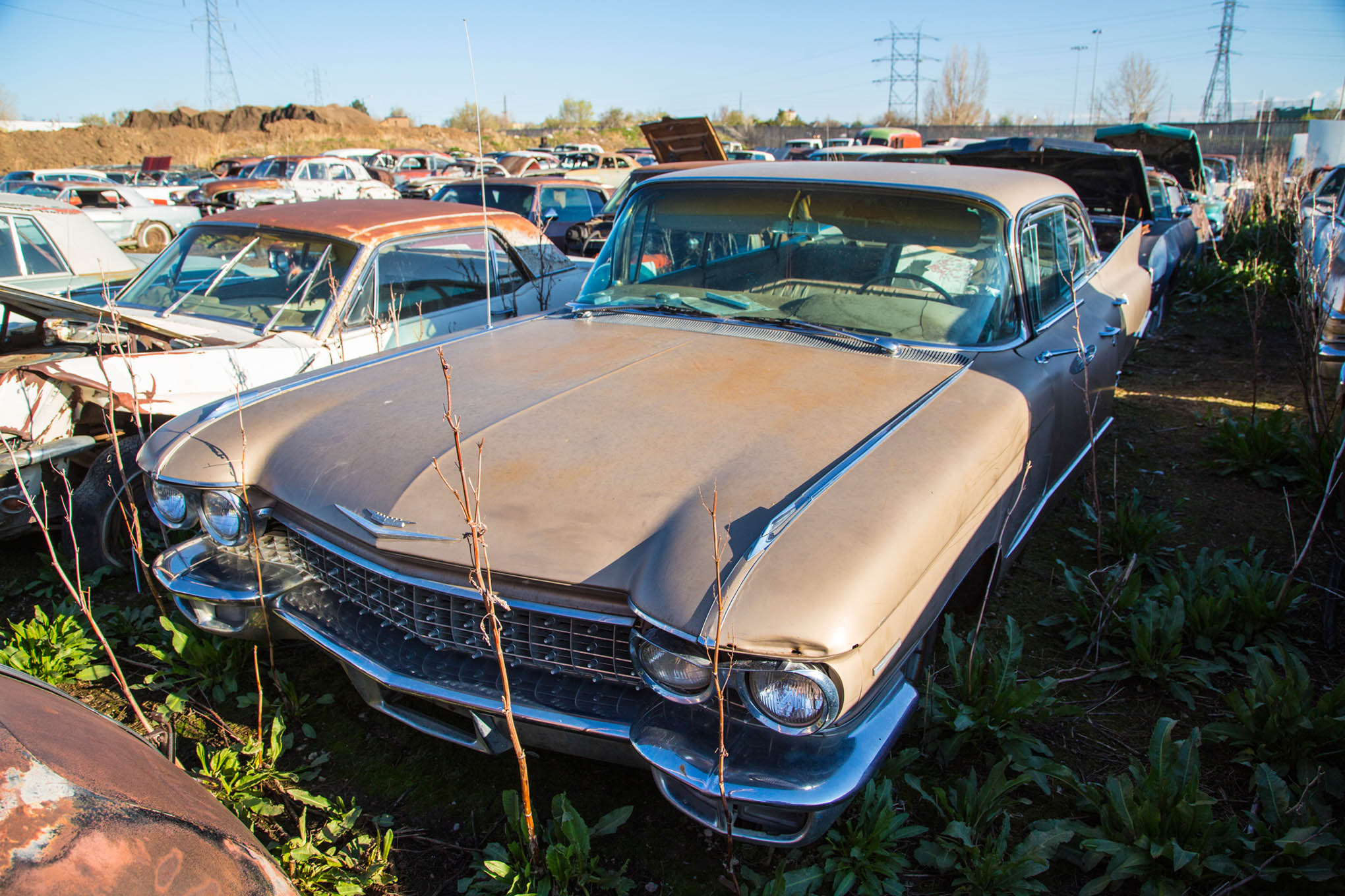 colorado auto parts junkyard musclecars classics wrecking yard mach mustang cougar photo