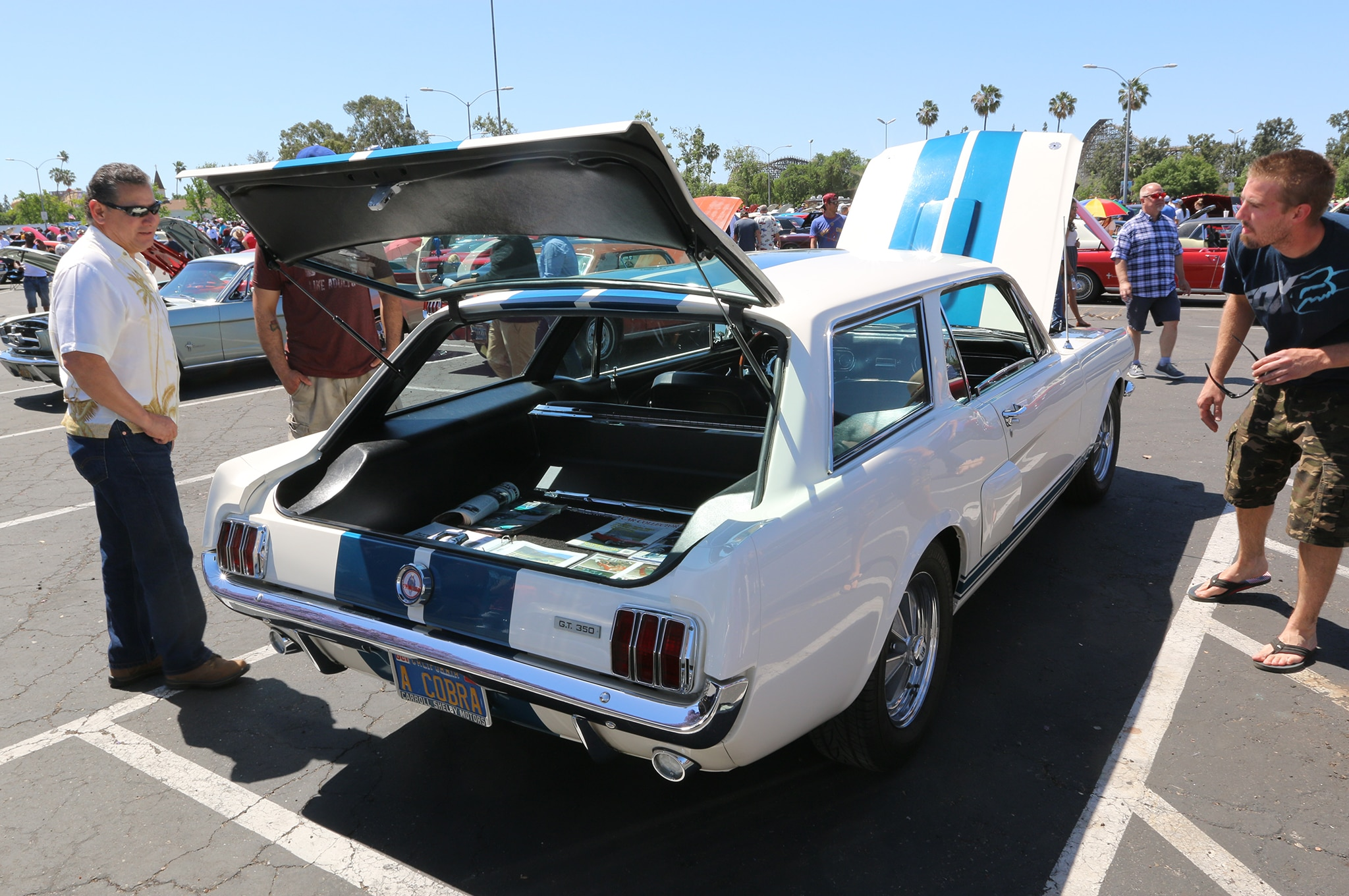 1965 Ford Mustang Wagon
