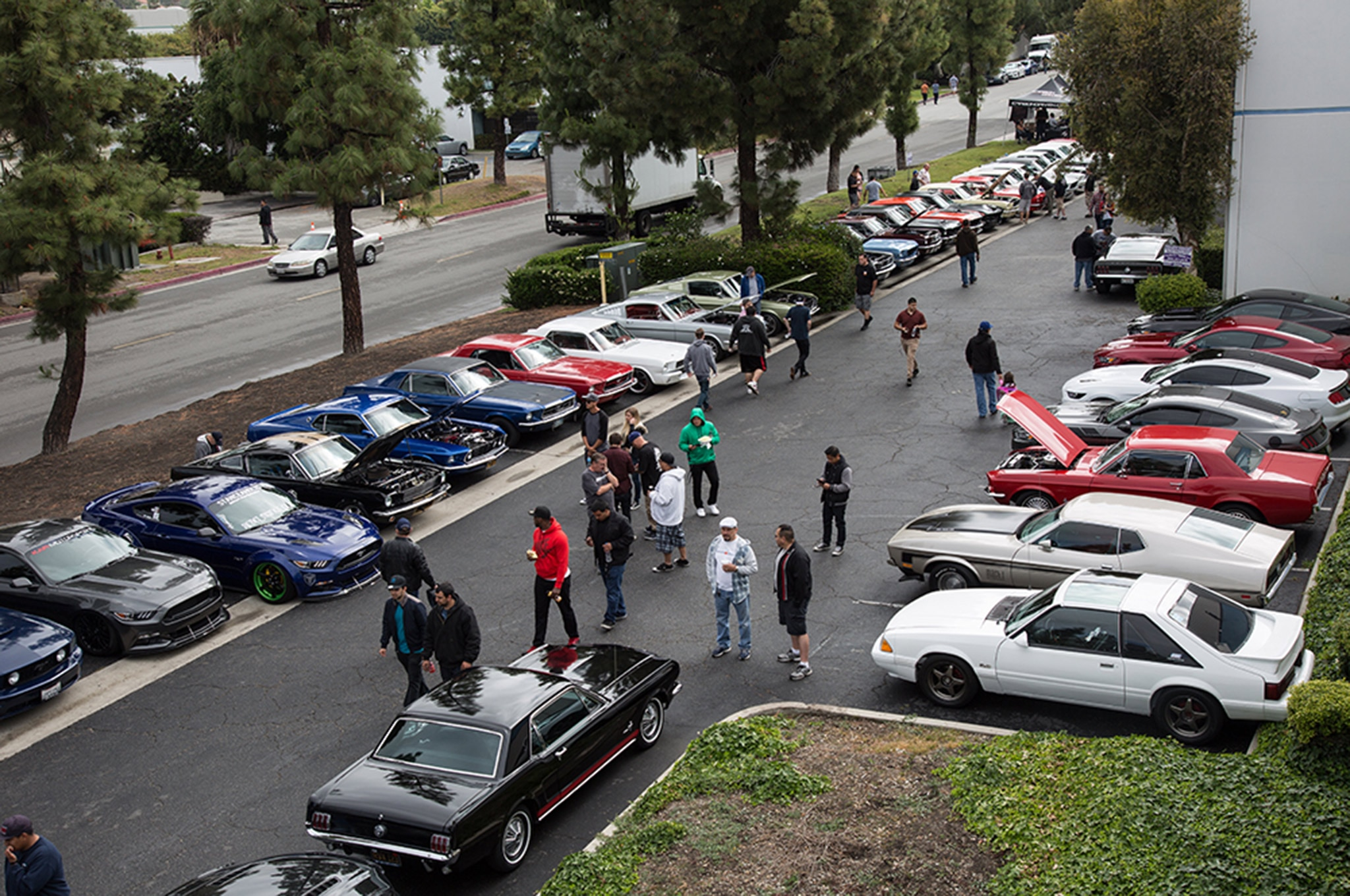 2016 California Mustang Meetup 3 019