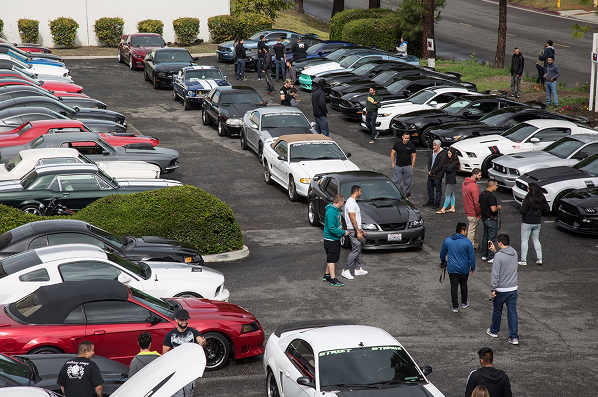 2016 California Mustang Meetup 3 017
