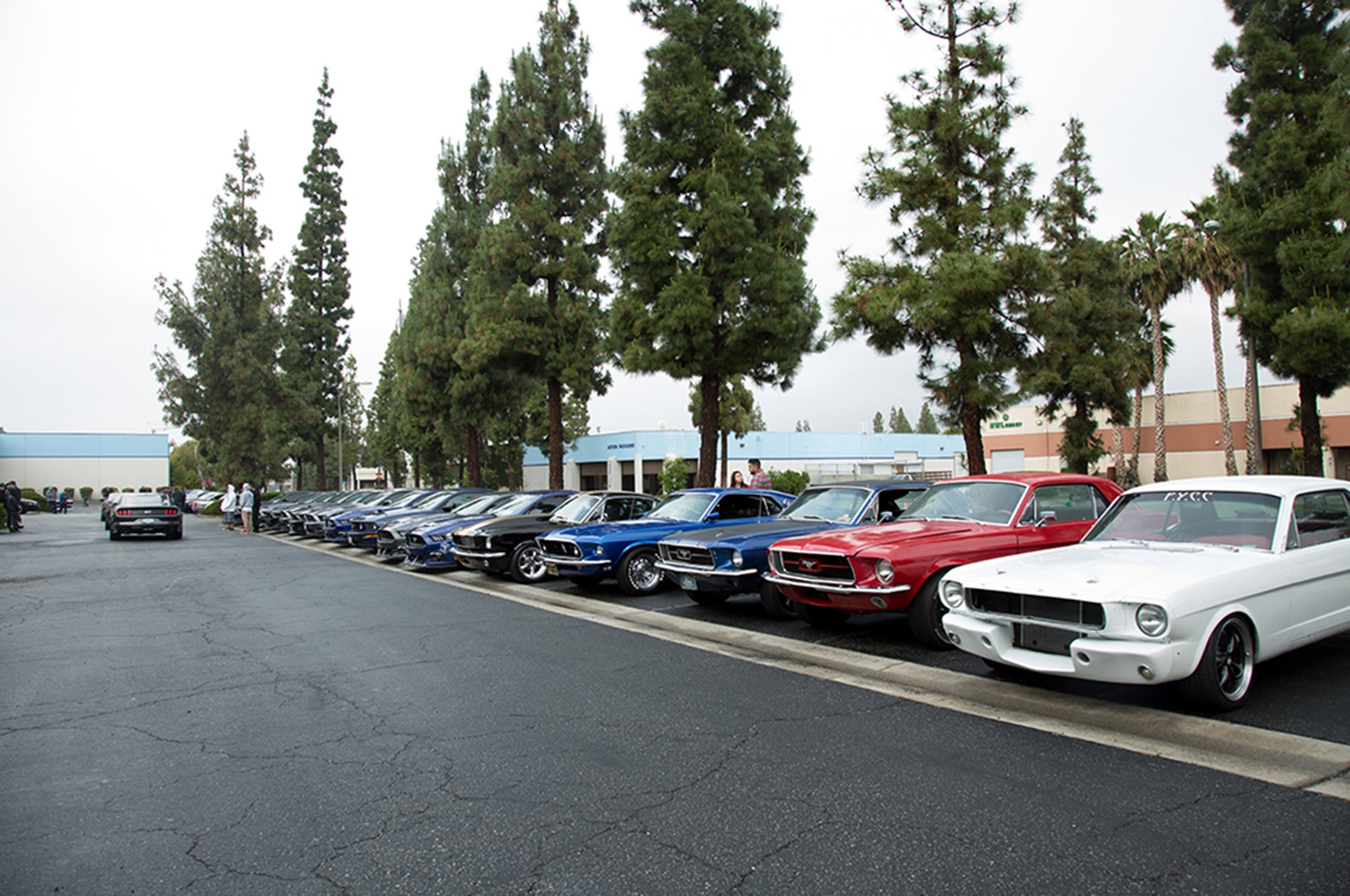 2016 California Mustang Meetup 3 013