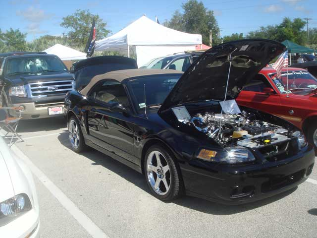 2008 Mustang Club Of Tampa Show