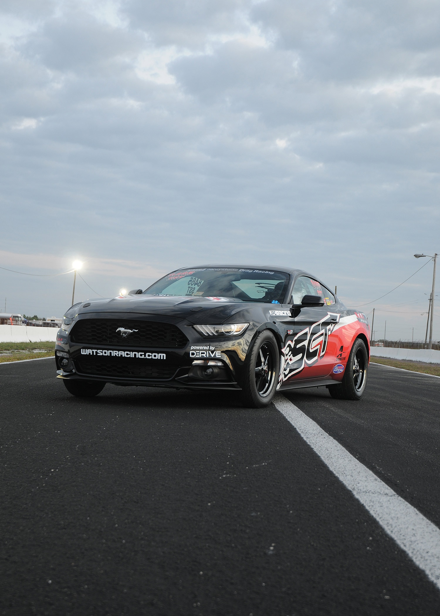 2015 ford mustang ecoboost portrait