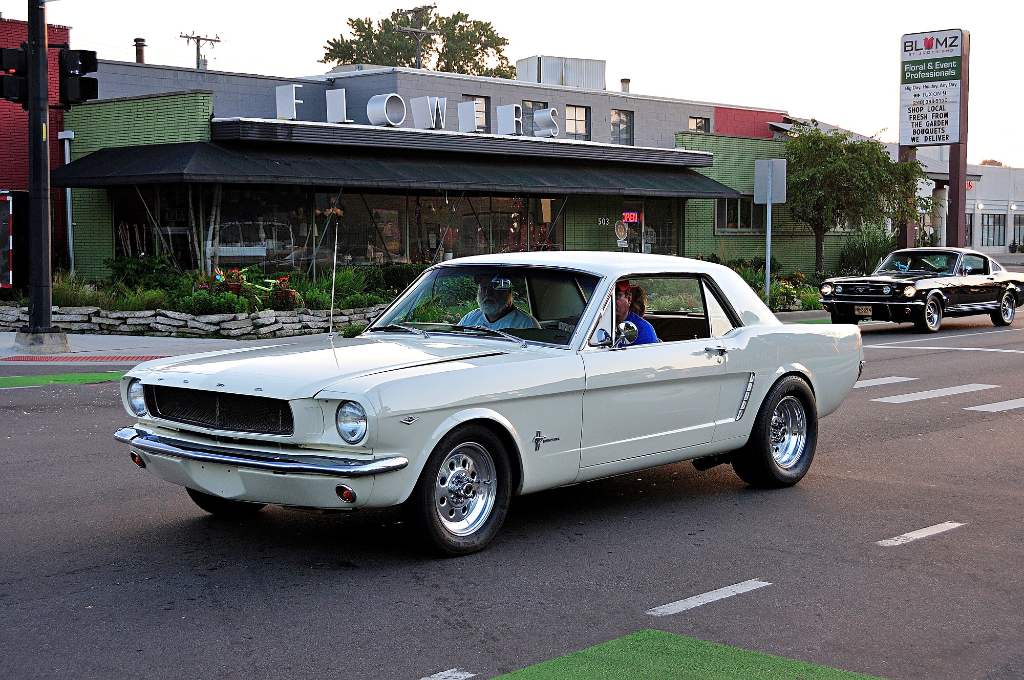 2016 Woodward Dream Cruise Mustang Alley 107