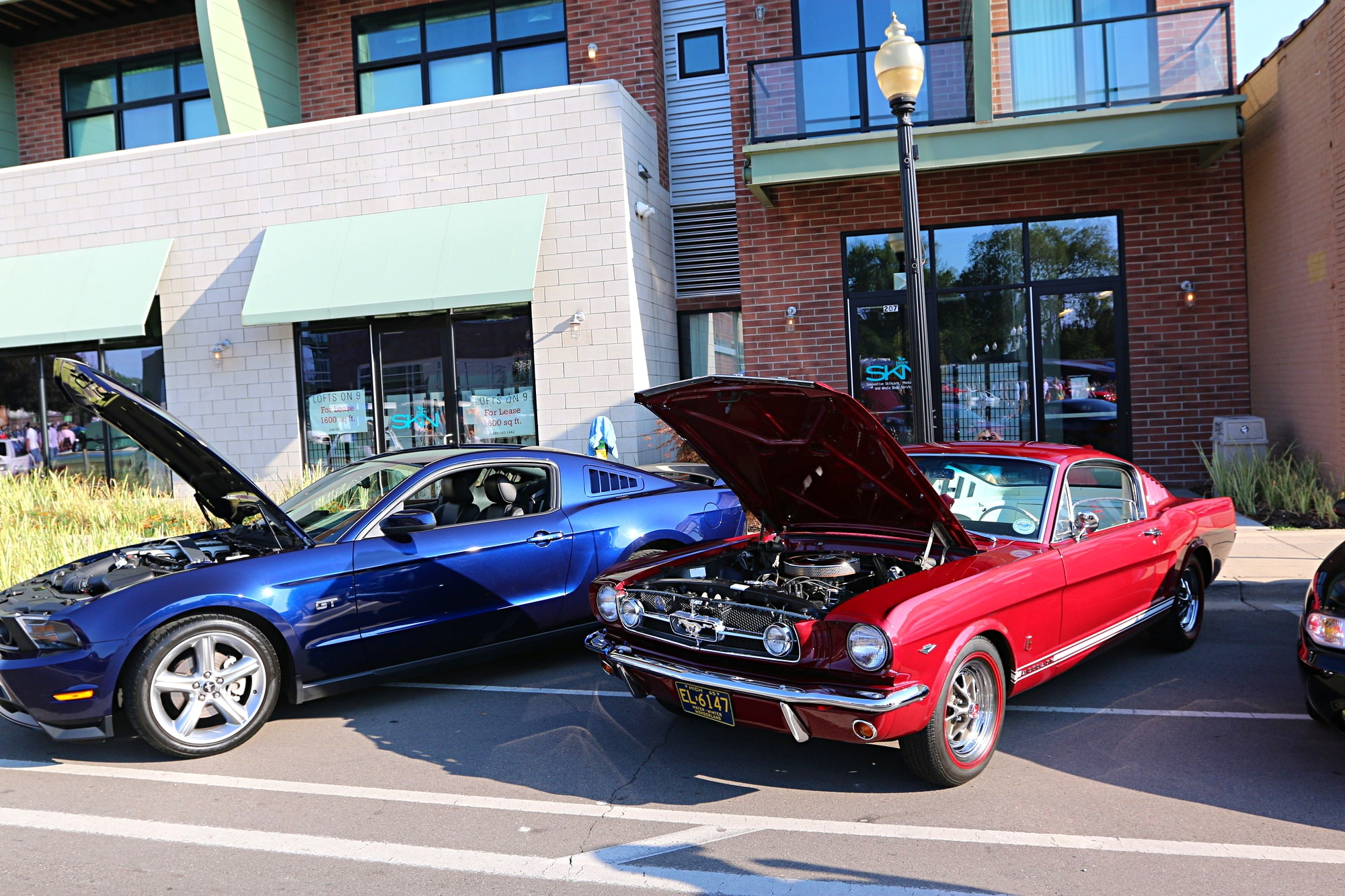 2016 Woodward Dream Cruise Mustang Alley 031