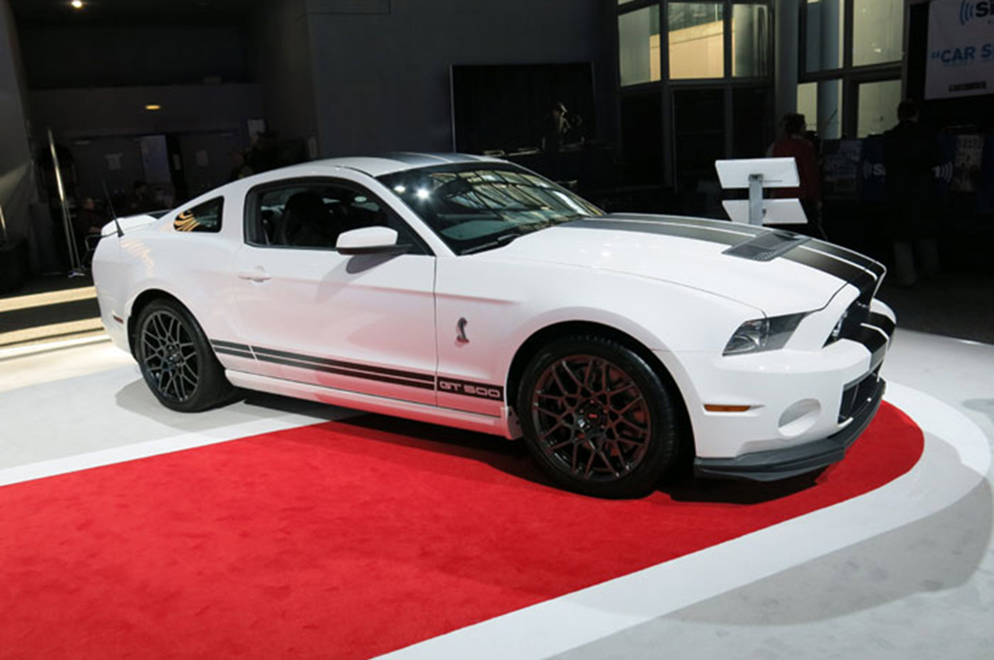 Ford Mustang Shelby Gt350 Vs Gt500 White Front
