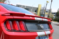 2015 Shelby GT Mustang 28 Carbon Fiber Tail Light Panel