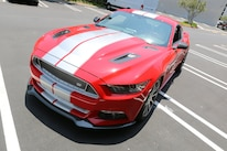 2015 Shelby GT Mustang 13 Stripes