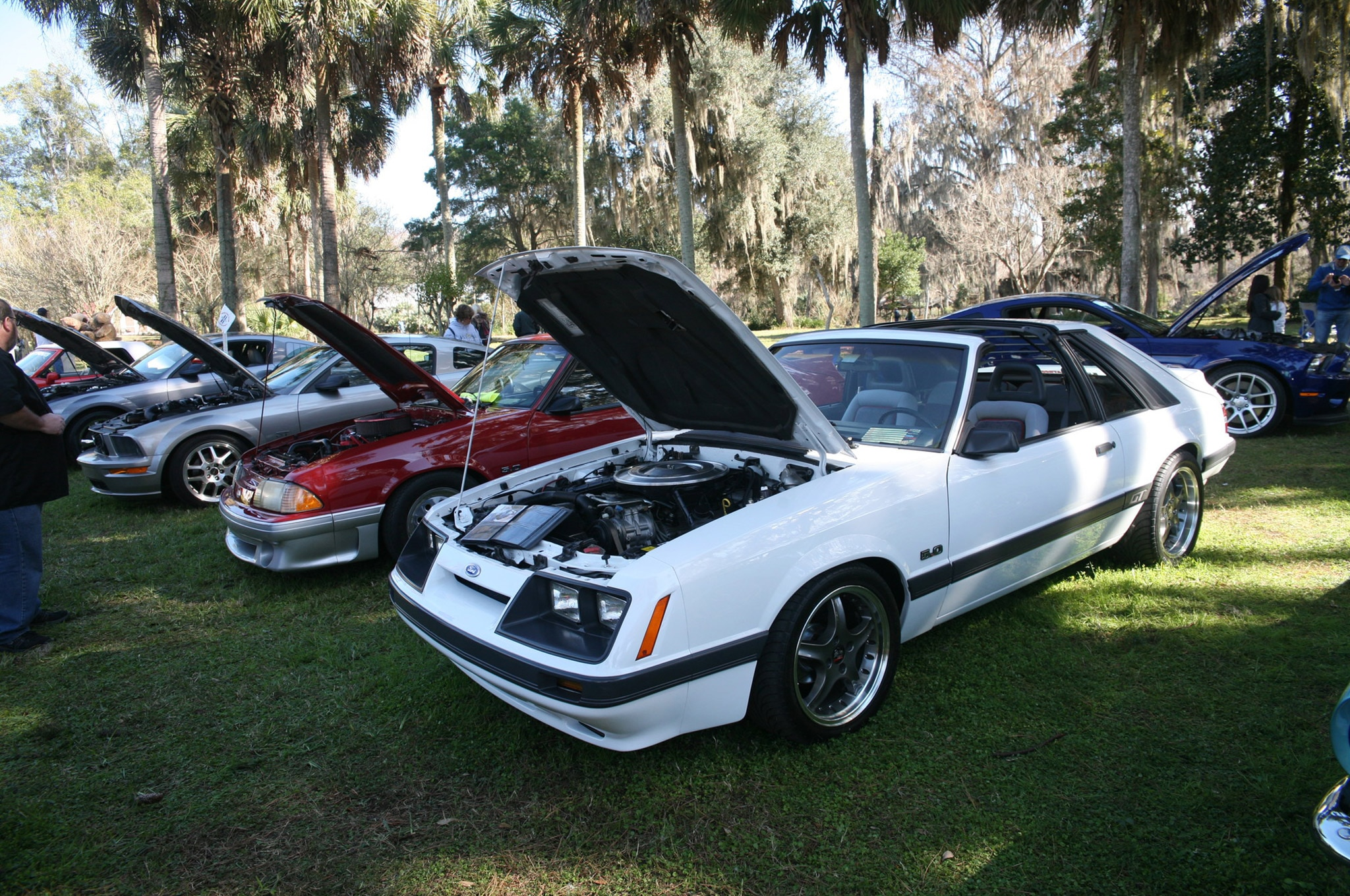 2015 Silver Springs Ford Mustang Roundup Ocala 04