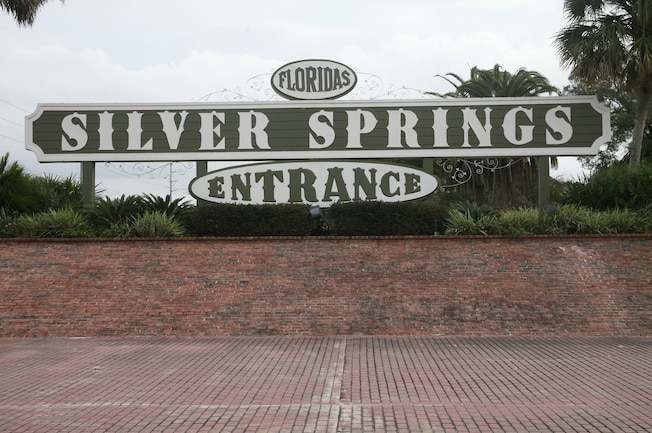 2015 Silver Springs Ford Mustang Roundup Ocala 01a