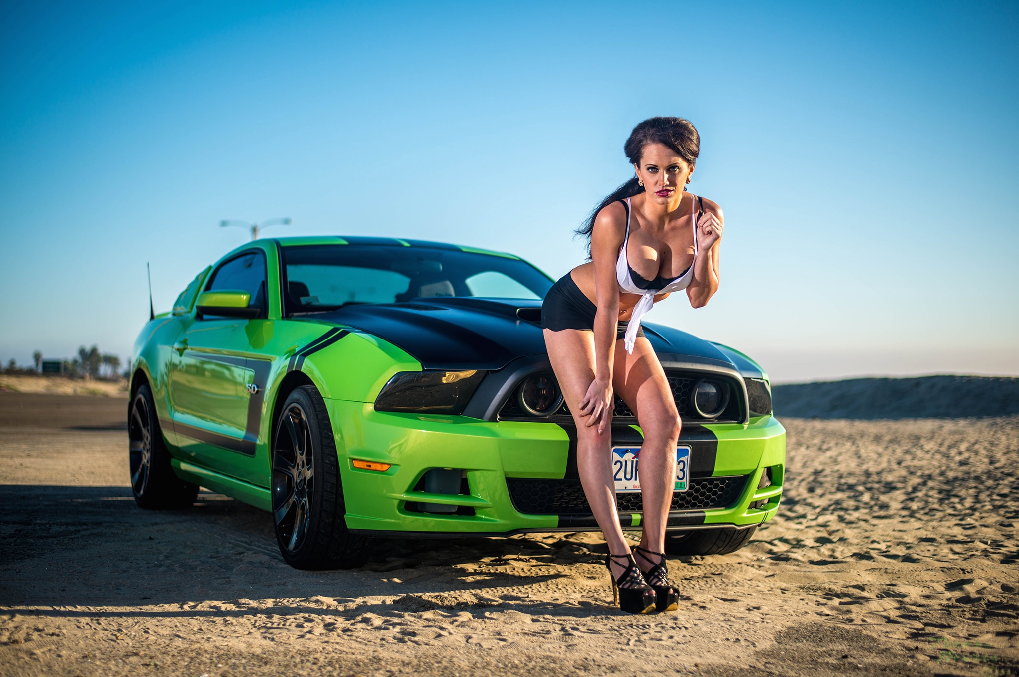 2013 Mustang Gt Devin Bagley Mustang Babe Of The Month 05