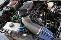 2015 Ford Mustang S550 Watson Racing Engine Detail