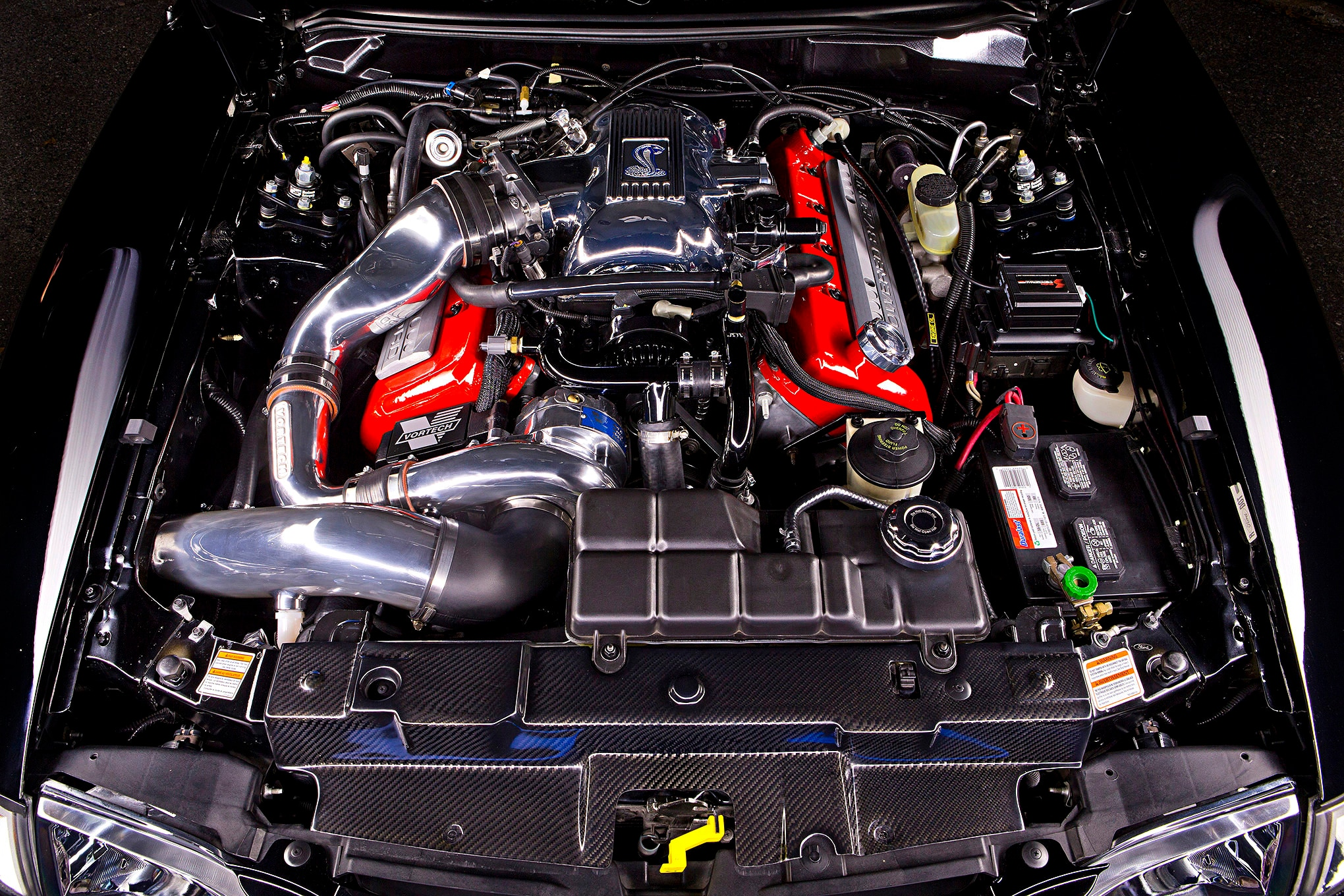 1998 Ford Mustang Cobra Engine