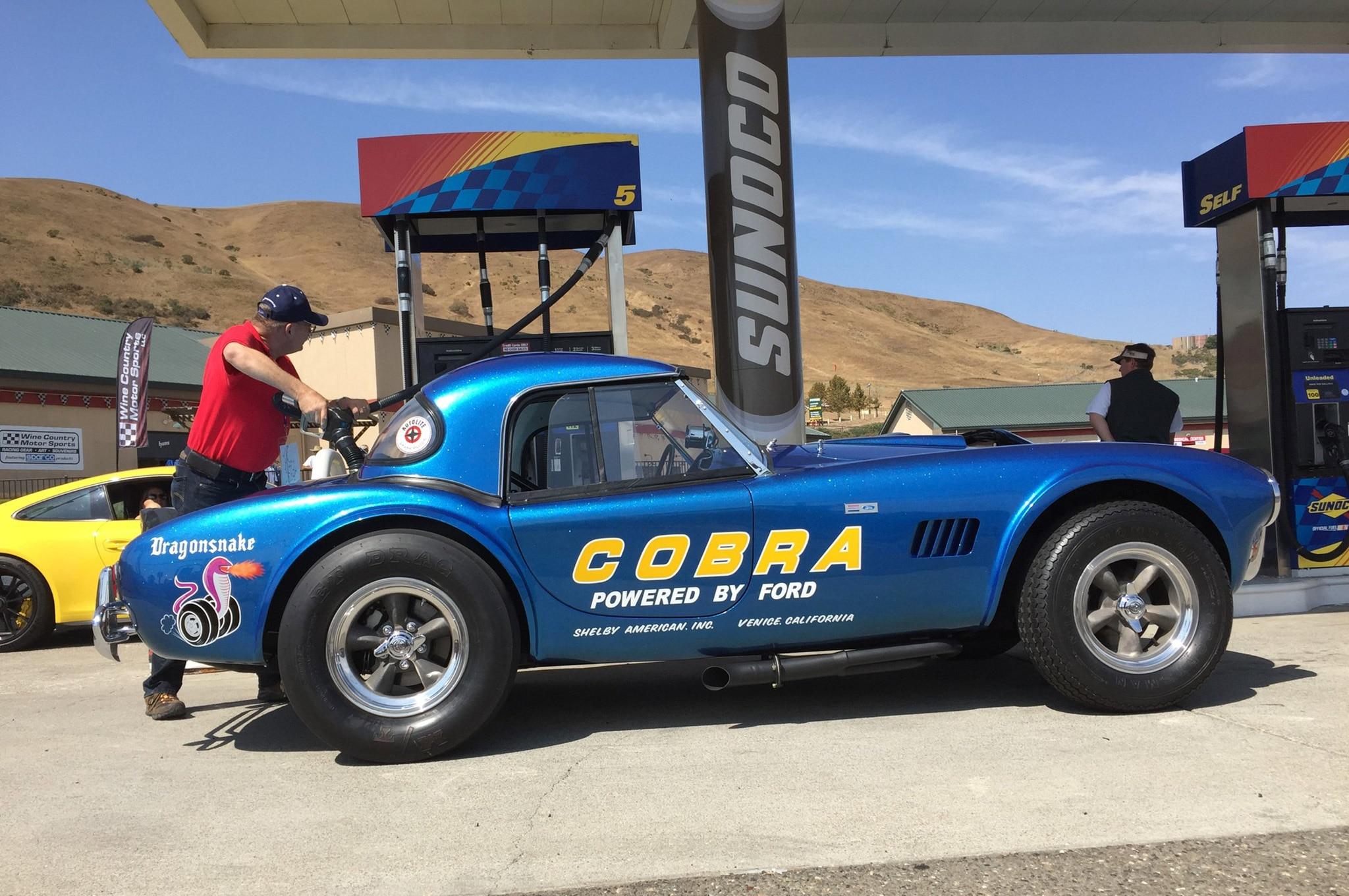 Shelby Dragonsnake Cobra