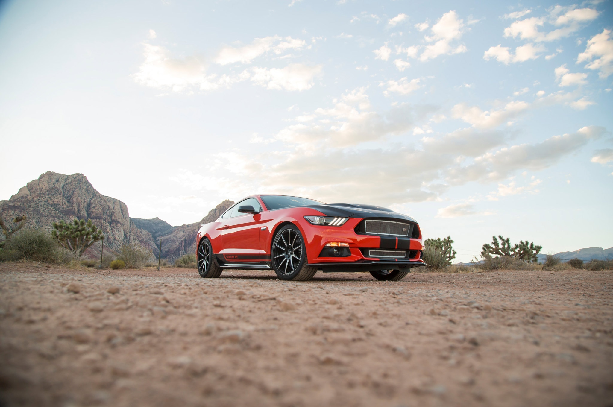 11 Shelby GT EcoBoost Mustang