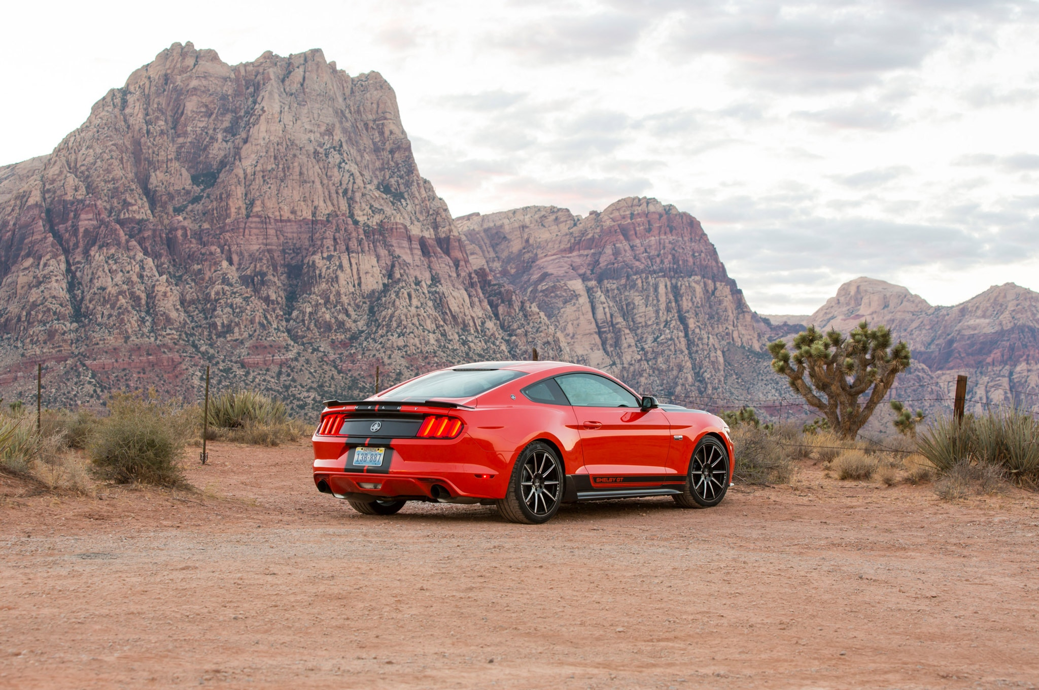 07 Shelby GT EcoBoost Mustang