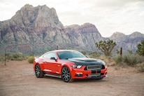 06 Shelby GT EcoBoost Mustang