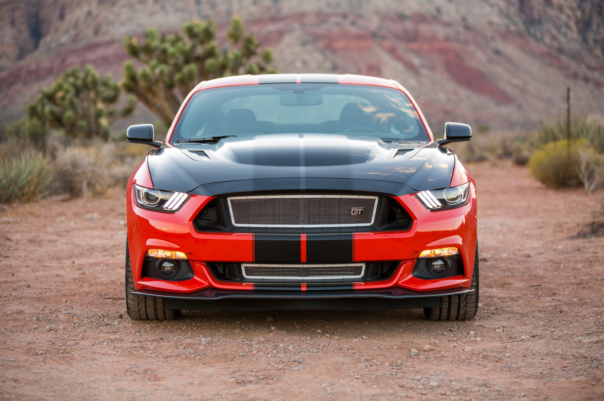 02 Shelby GT EcoBoost Mustang Front