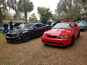 Two Powerful Mustangs—10th Anni 2003 Cobra & 2013 Shelby GT500