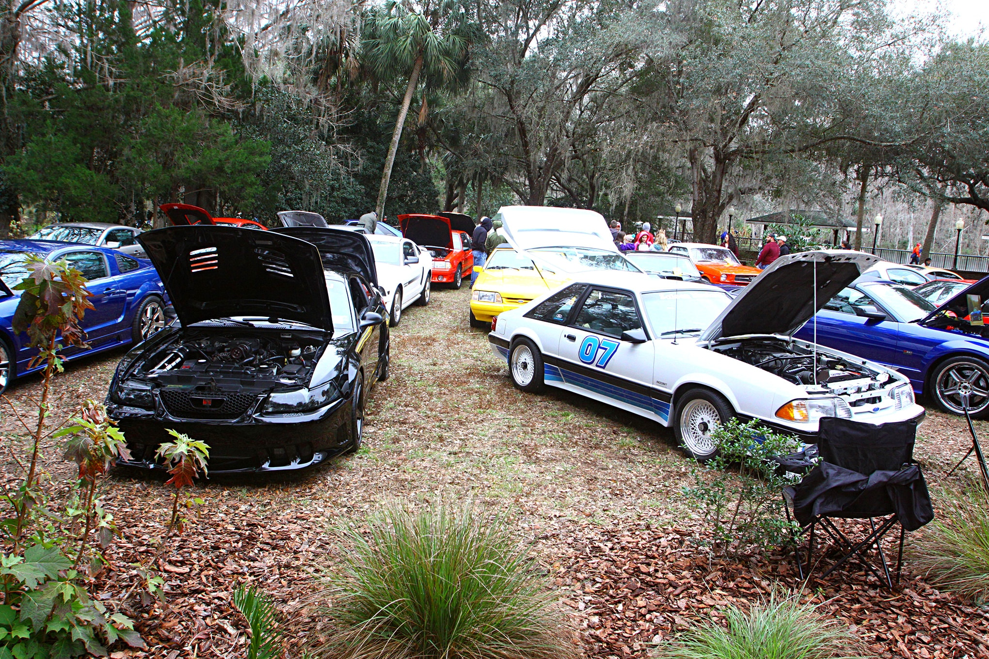 2018 Silver Springs Mustang Show159