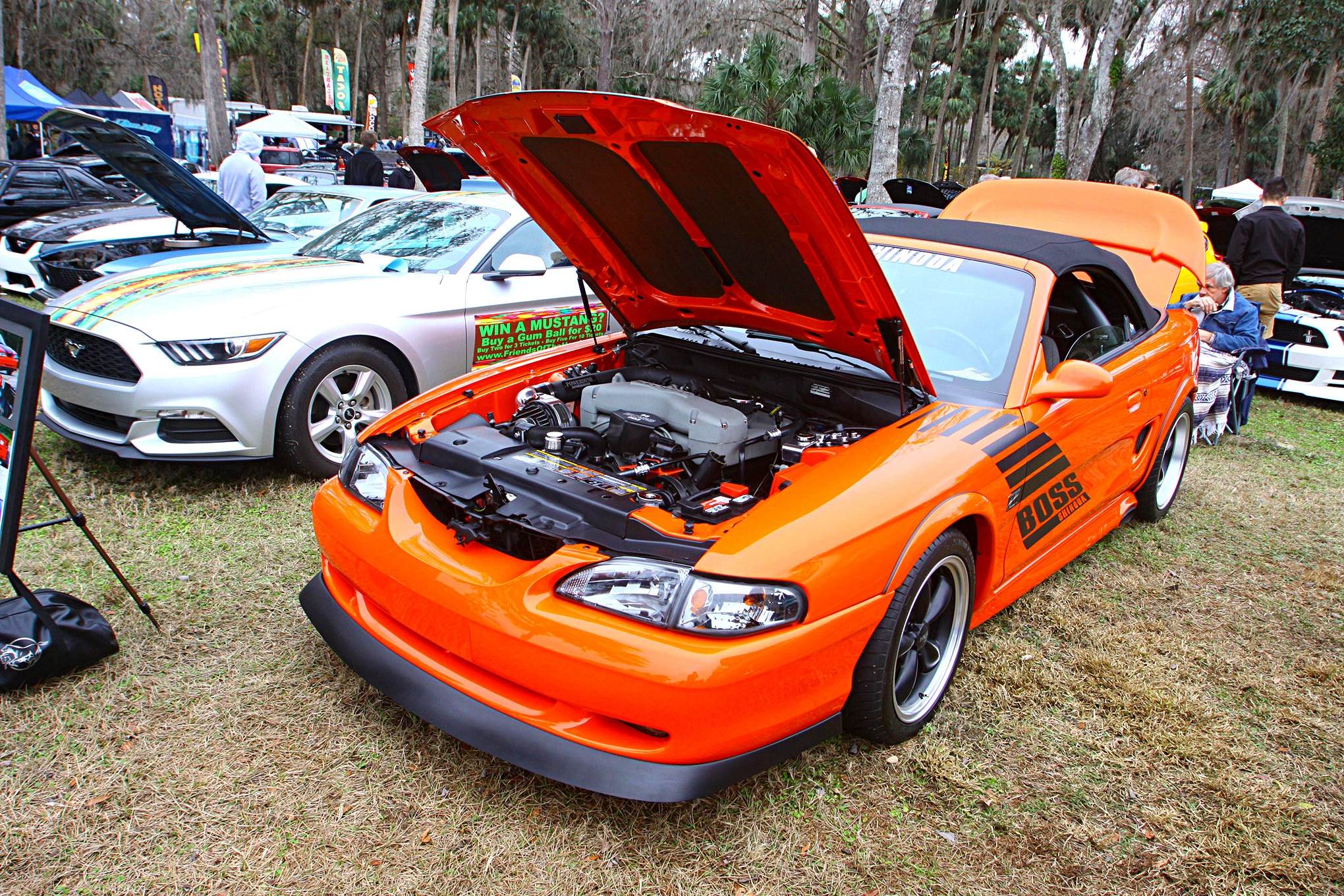 2018 Silver Springs Mustang Show152