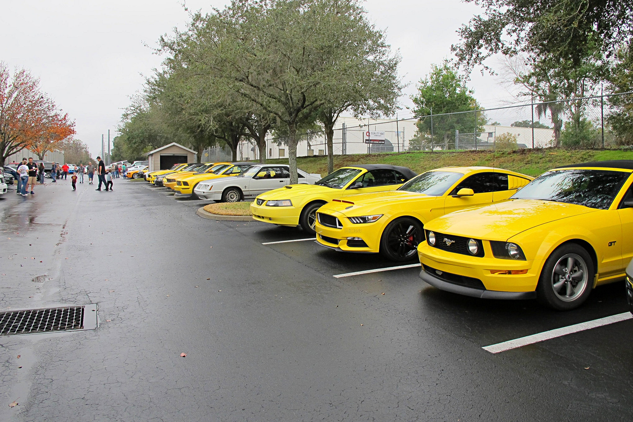 2018 Silver Springs Mustang Show017