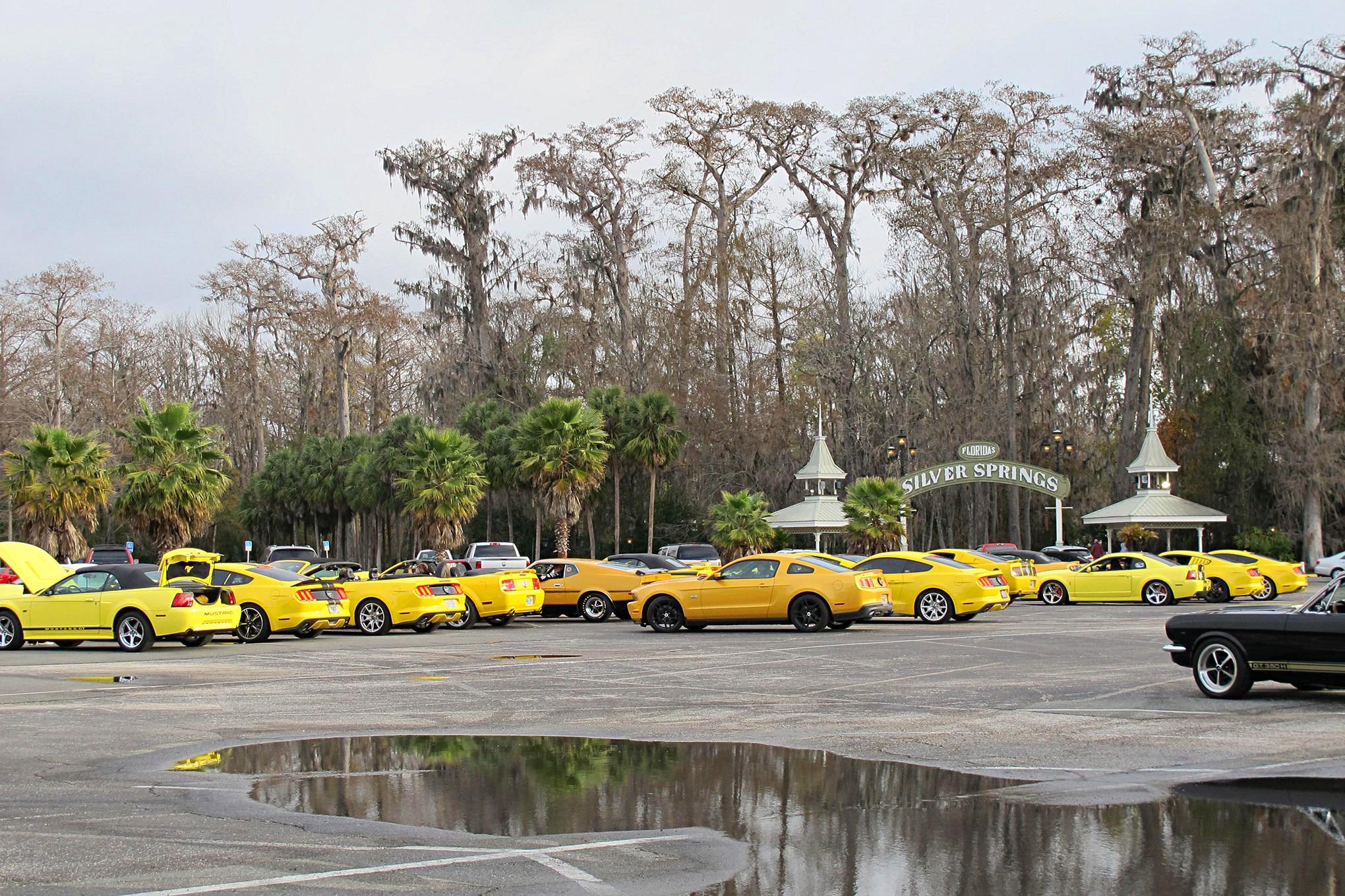 05 Silver Springs Club Parking Yellow Mustang Registry NPD