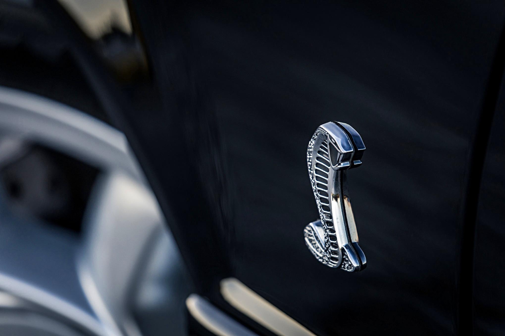 Brad Brand Fox Cobra Mustang Turbo 003
