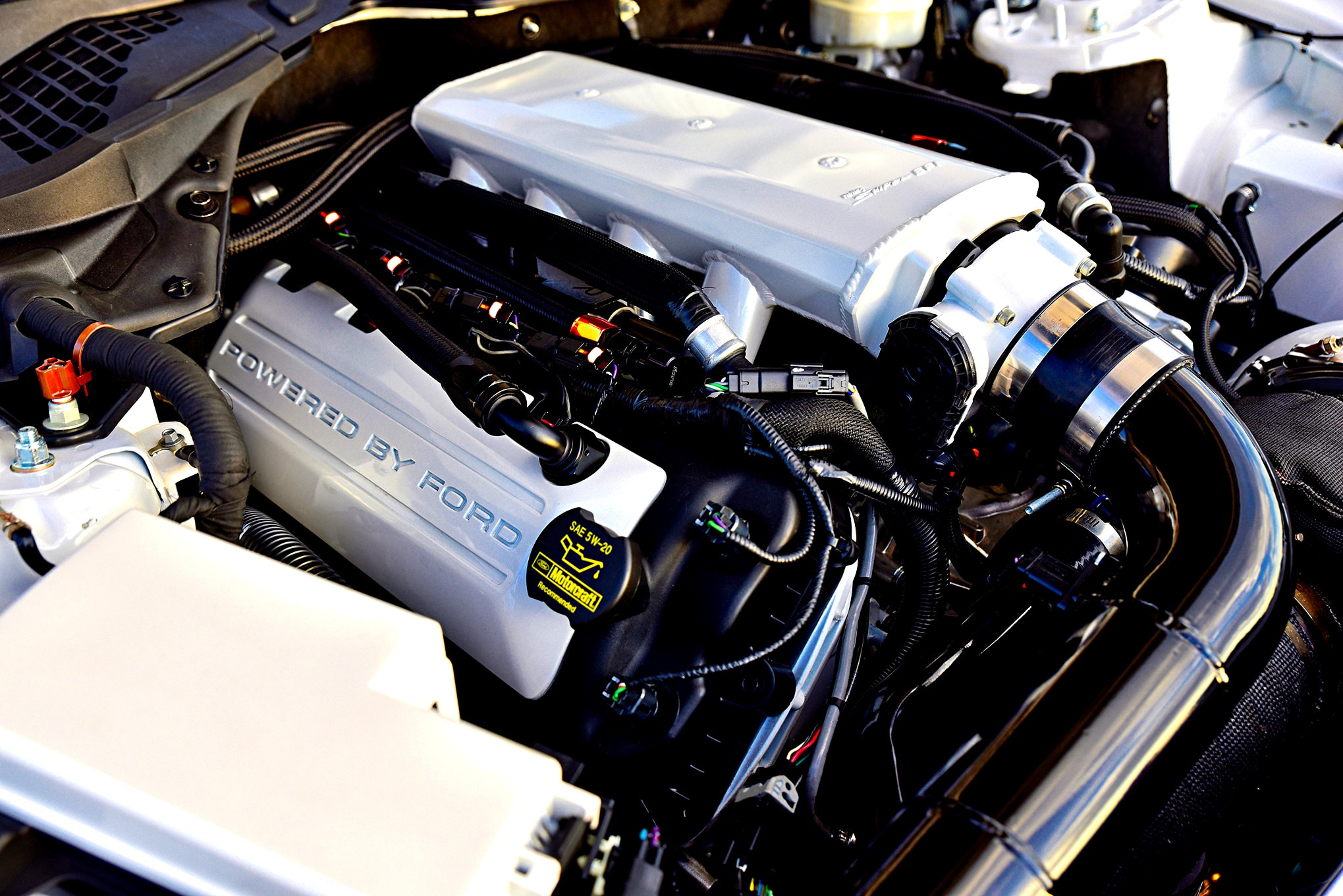 Sheldon Lewis S550 Ford Mustang 016