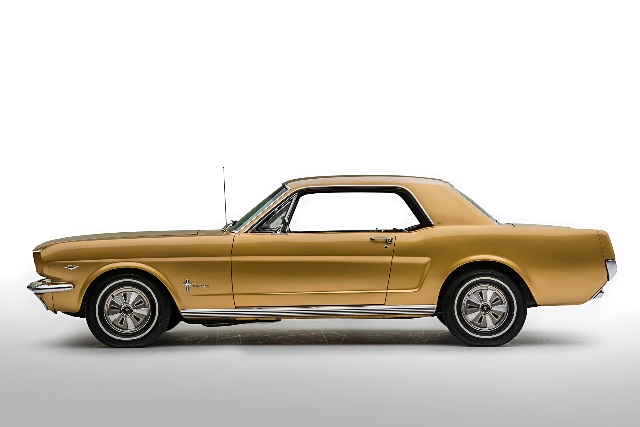 Golden Anniversary Mustang 002