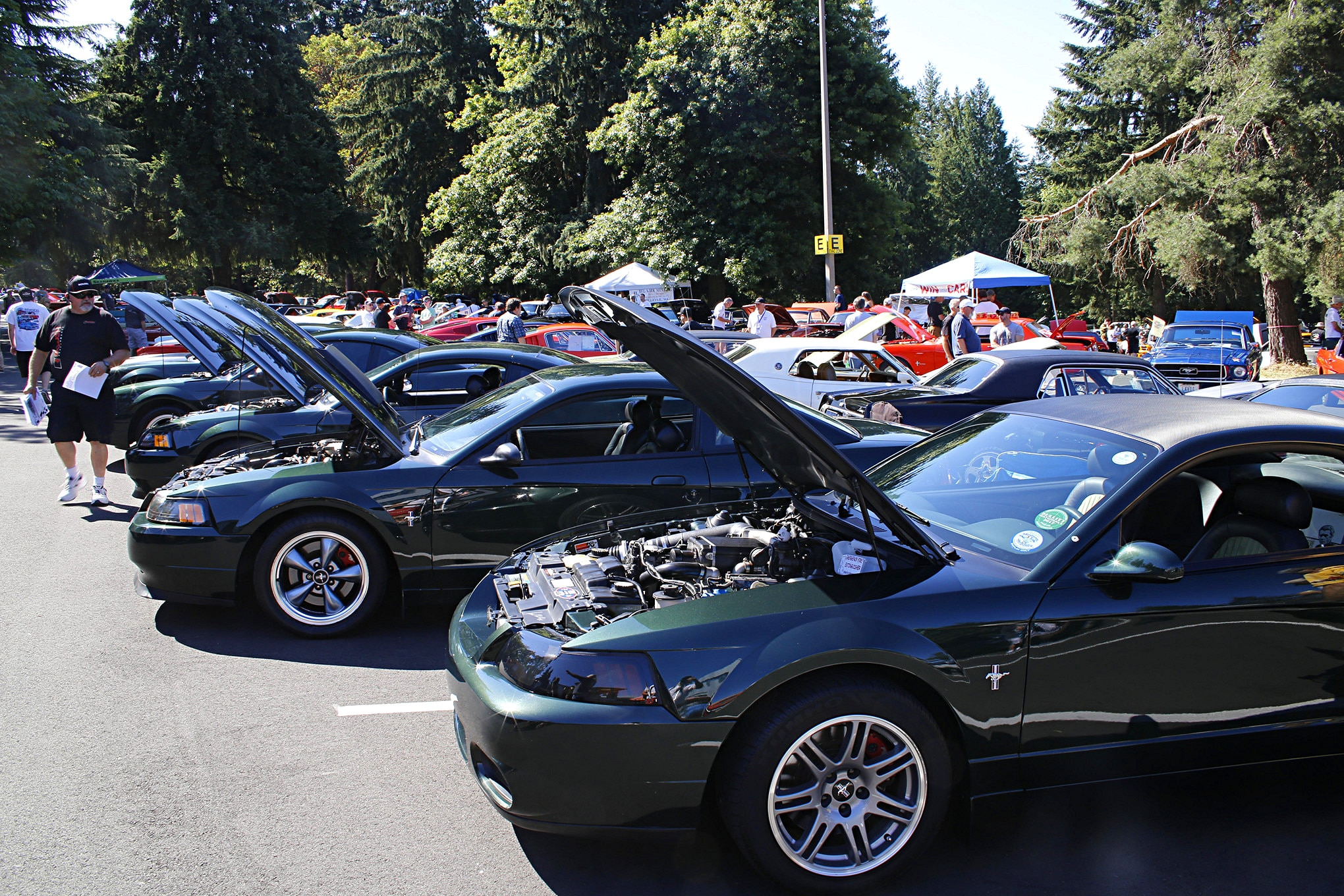 2018 Mustang Roundup Misc 9