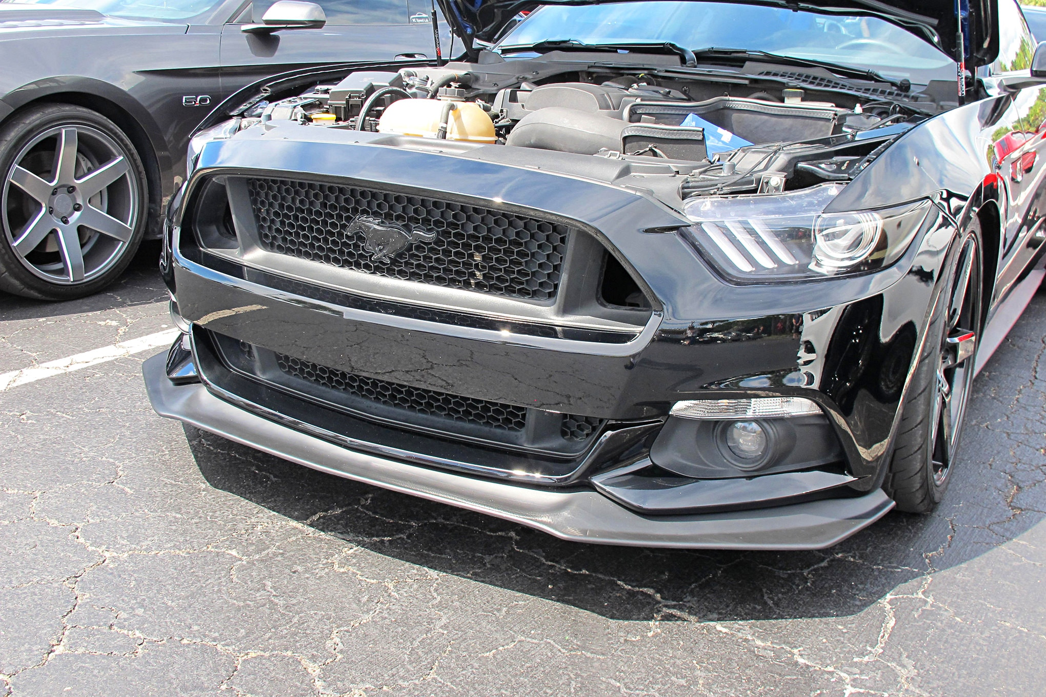 Mustang Week Front End Gallery 8