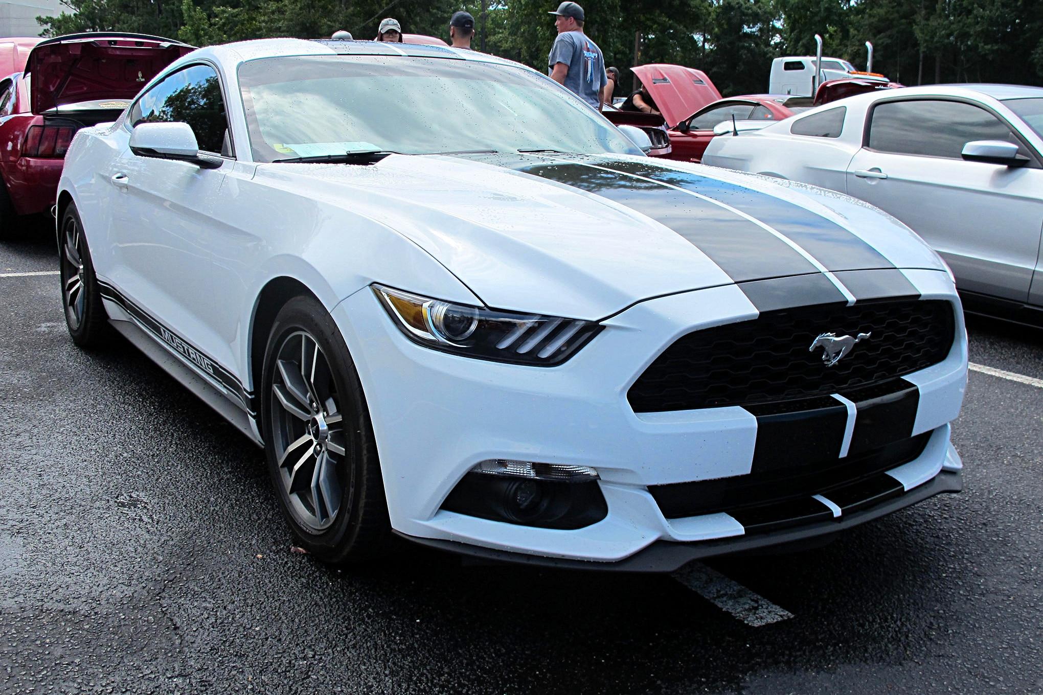 010 2018 Mustang Week S550 Mustangs