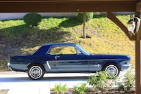 Fria Mustang