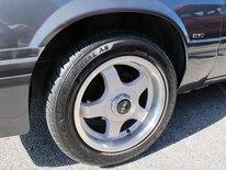 Foxtoberfest Wheels 60
