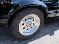 Foxtoberfest Wheels 46