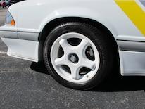 Foxtoberfest Wheels 29