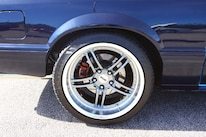 Foxtoberfest Wheels 9