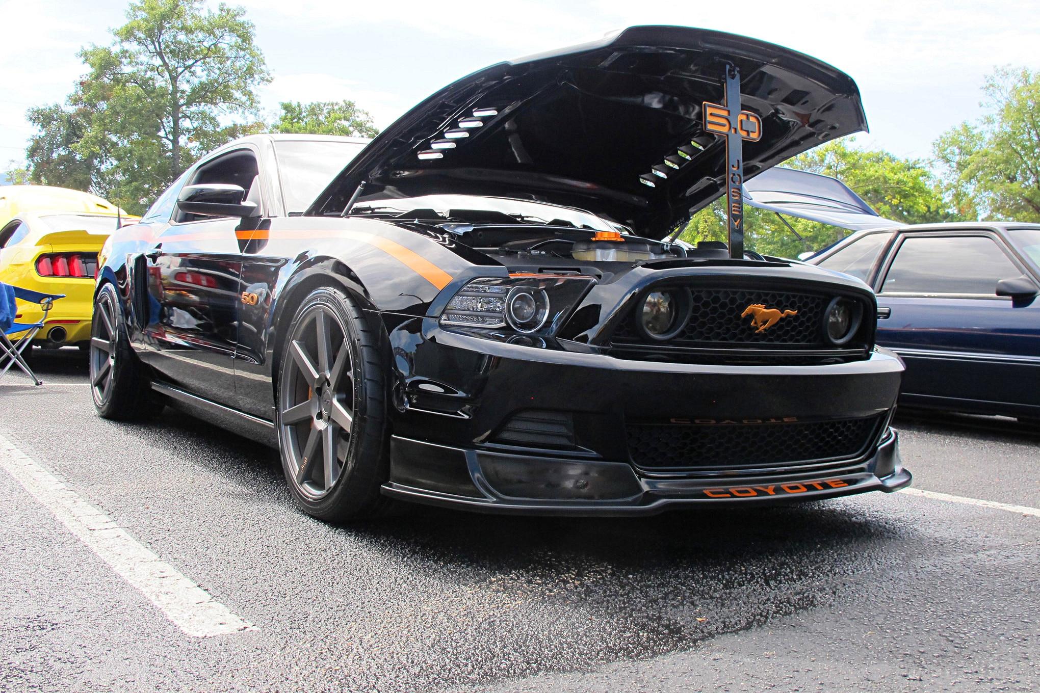 Mustang Week 2018 S197 Mustangs 34