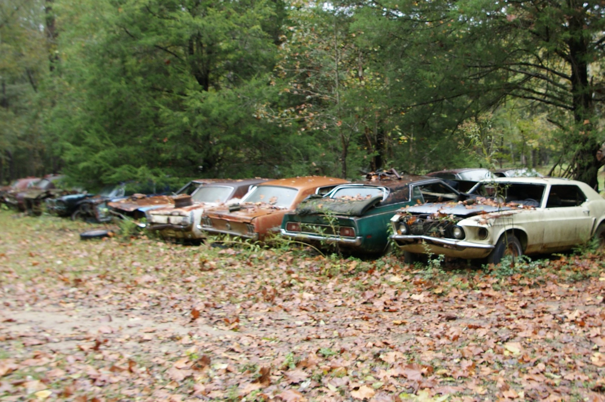 Rare Field Finds Fords Mustangs Trucks Parts 07