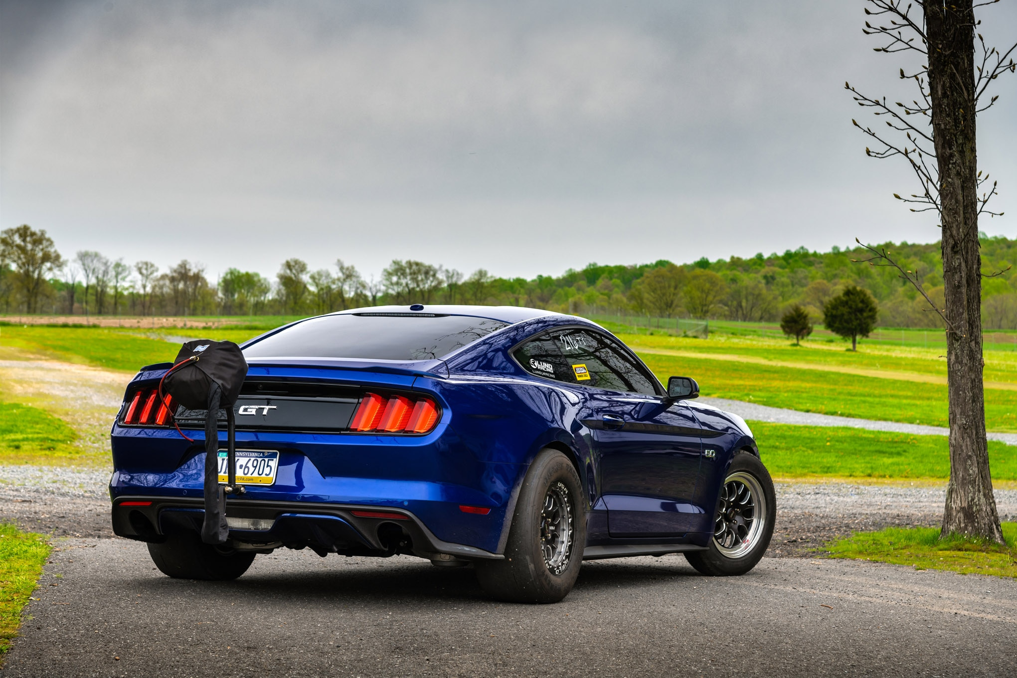 Lund Racing 2015 Mustang GT 2