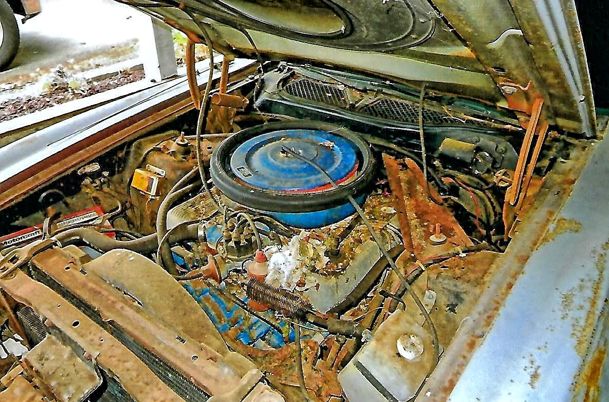 002 RareFinds 1971 Mustang SCJ Convertible