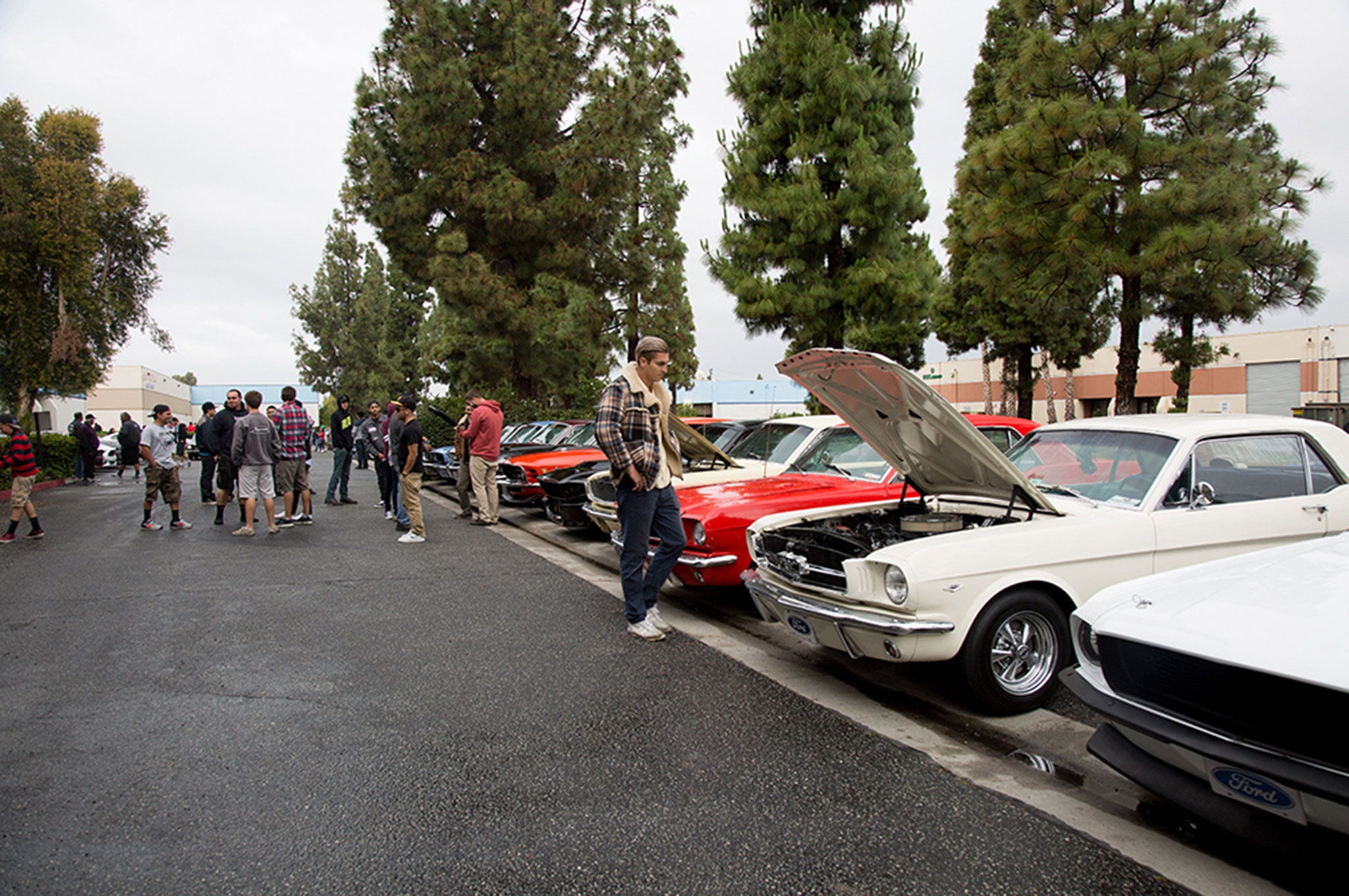 2016 California Mustang Meetup 3 003