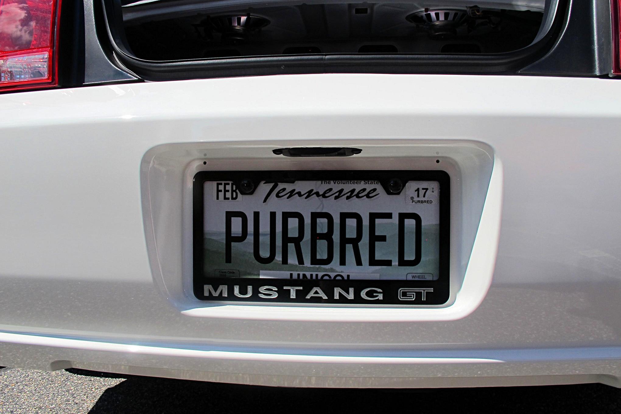 2016 Mustang Week Mustangs Custom License Plates 42