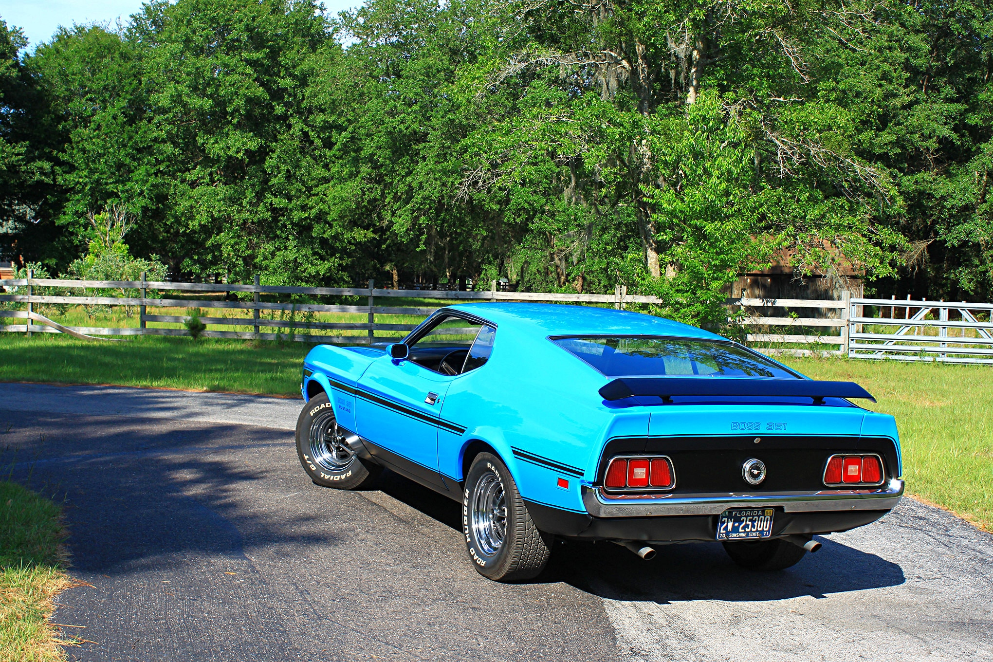 40 1971 Ford Mustang Boss 351 Blue Rear Three Quarter